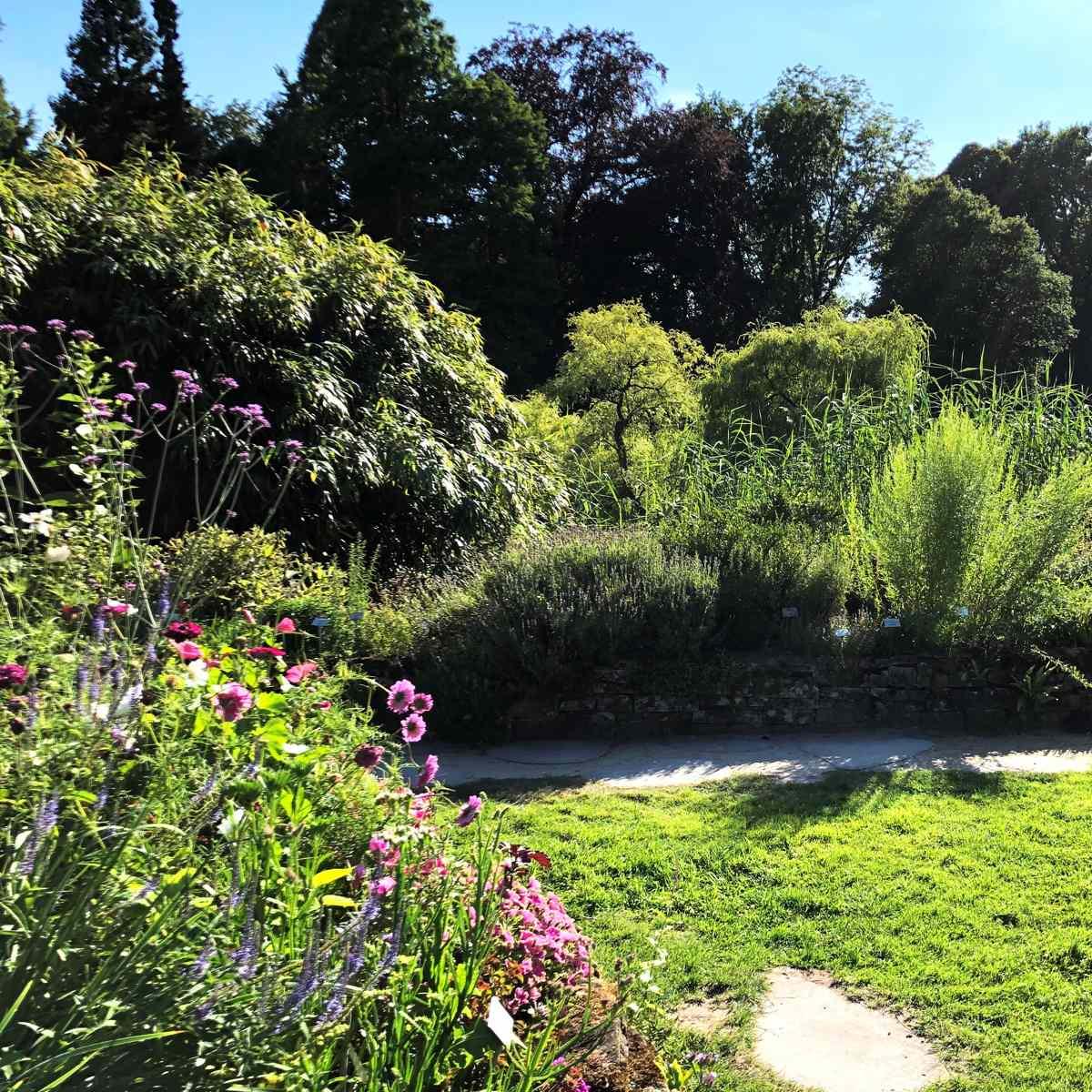 Gärten vielfältig gestalten – Gartentechnik Küll